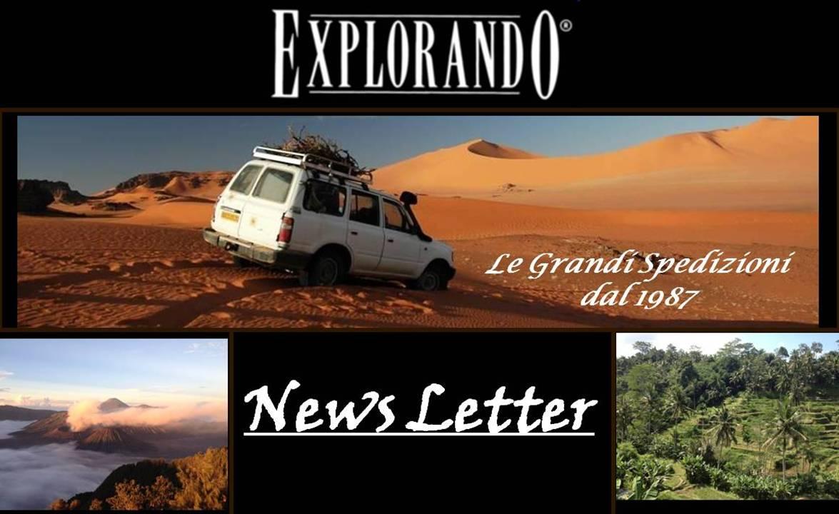 newsletter-pulsante