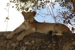Tanzania3 (29)