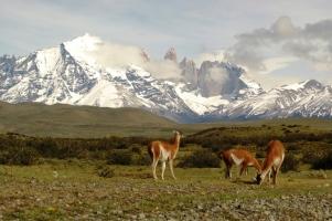 argentina-cile-patagonia-classica