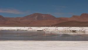 cile-nord-e-deserto