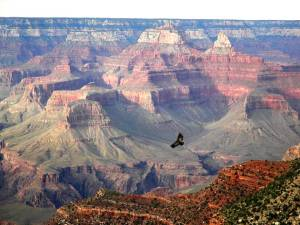 usa-famous-american-national-park